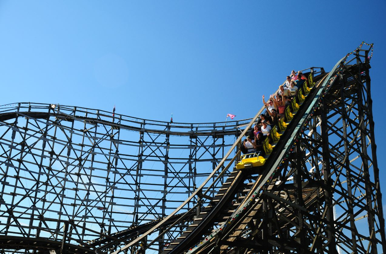 the anatomy of a roller coaster essay