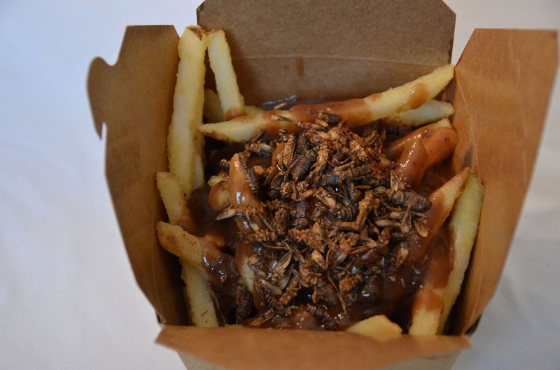 Roaster BBQ Cricket Fries with Gravy